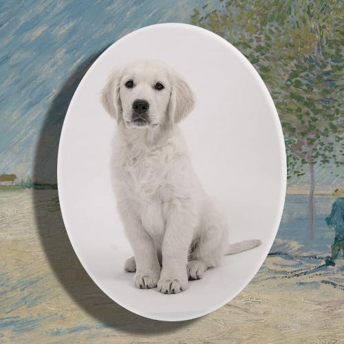 Ovaal porselein gedenkteken huisdier hond poes