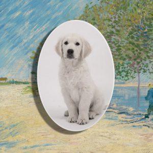 Ovaal porseleintje huisdier gedenkteken