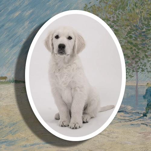 Porselein gedenkteken met witte rand huisdier