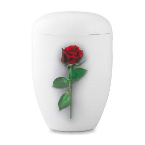 Biologische urn wit met rode roos