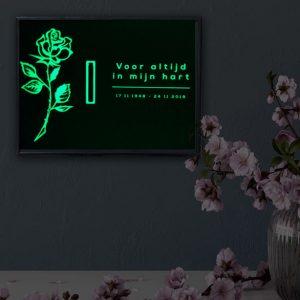 Wandurn Gedenkteken In Huis Glow In The Dark Licht