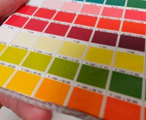 Kleurenpallet Op Porselein